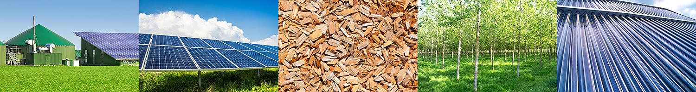Erneuerbare Energien: Biogas, Solar, Biomasse